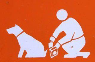 Recoge las heces de tu perro