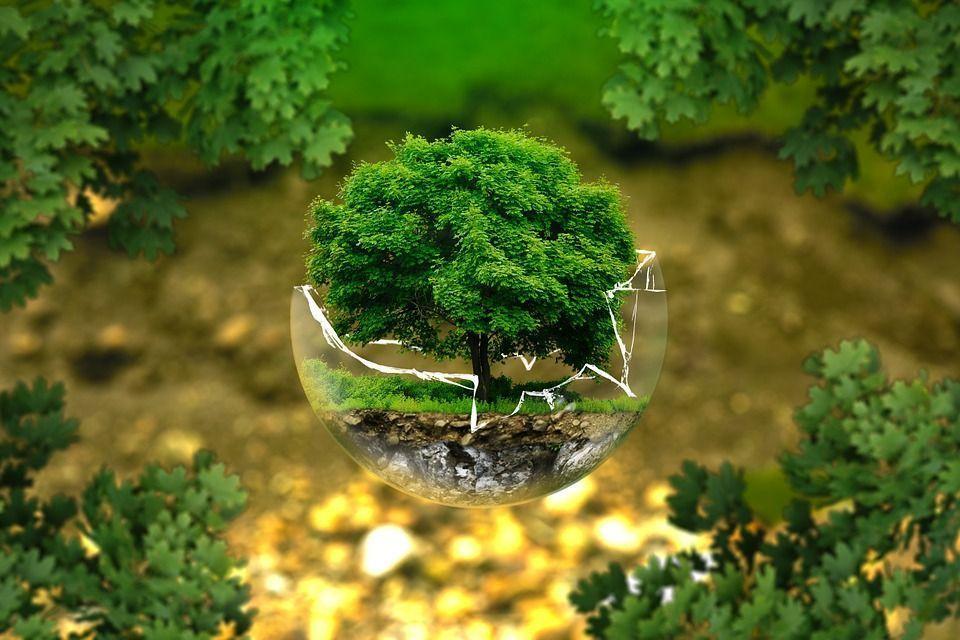 Ecologistas en acción reclama capacidad crítica a la sociedad