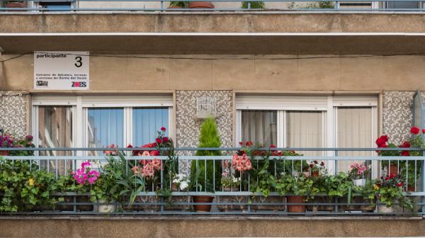 I CONCURSO DE FLORES y PLANTAS del Barrio del Oeste para la ornamentación de sus balcones, terrazas y ventanas en la primavera de 2021